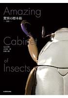 驚異の標本箱 ‐昆虫‐