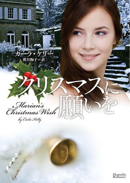 クリスマスに願いを