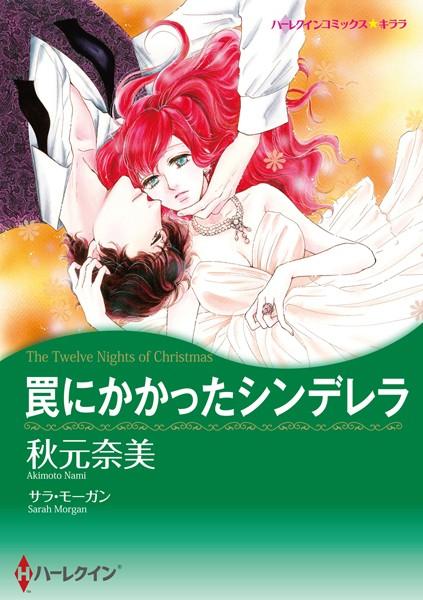 冬に咲くロマンスの花セット vol.1