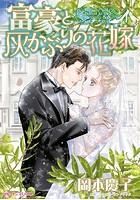 富豪と灰かぶりの花嫁