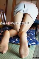 妄想人妻コレクション Vol.11
