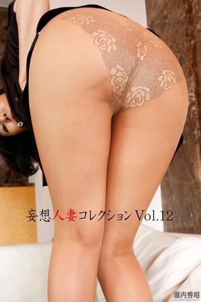 妄想人妻コレクション Vol.12