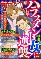 家庭サスペンス vol.33 特集:ハラスメント女に逆襲!