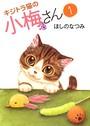 キジトラ猫の小梅さん 1