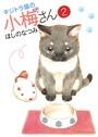 キジトラ猫の小梅さん 2