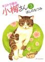 キジトラ猫の小梅さん 3