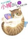 キジトラ猫の小梅さん 5