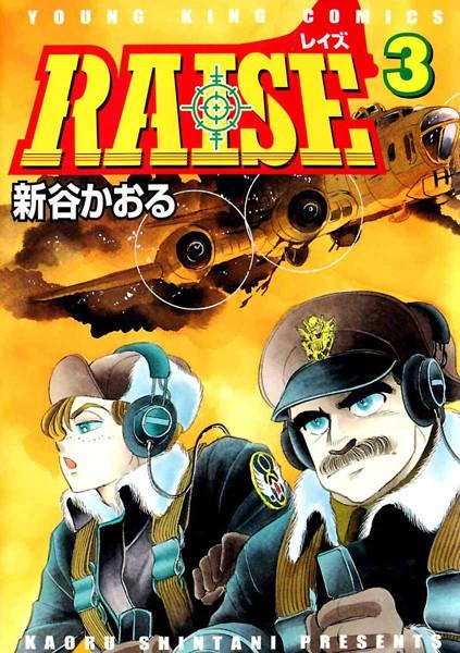 RAISE 3