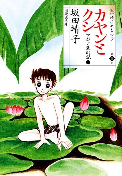 カヤンとクシ アジア変幻記1
