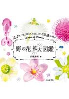 野の花拡大図鑑