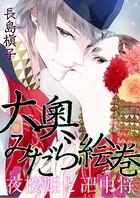 大奧みだら絵巻 夜桜姫と卍中将