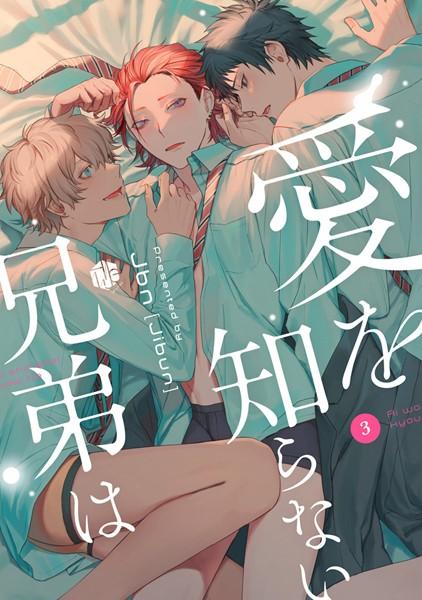 【恋愛 BL漫画】愛を知らない兄弟は(単話)