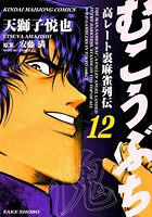 むこうぶち (12)