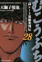 むこうぶち (28)