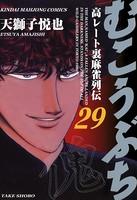 むこうぶち (29)