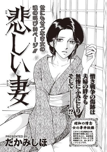 本当にあった主婦の黒い話 vol.4〜悲しい妻〜
