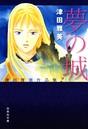 夢の城 津田雅美作品集 2