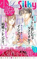 小説 Love Silky