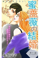 Love Silky 蜜薔薇の結婚 story13