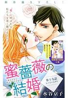 Love Silky 蜜薔薇の結婚 story19