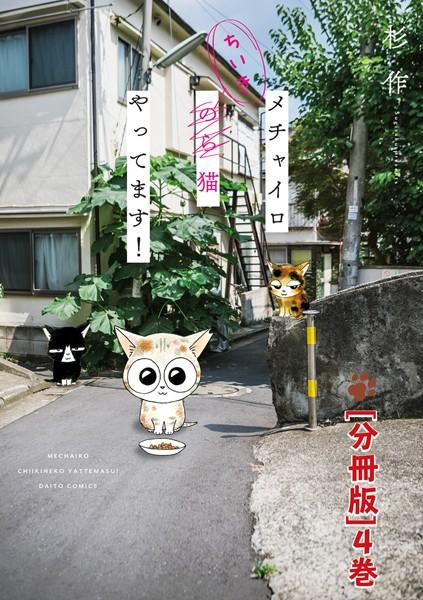 メチャイロちいき猫やってます!【分冊版】 4