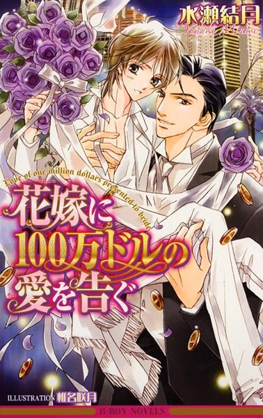花嫁に100万ドルの愛を告ぐ<特別版>