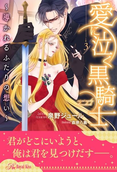 愛に泣く黒騎士 〜導かれるふたりの想い〜 【3】