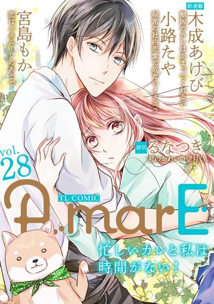 【恋愛 エロ漫画】AmarEvol.28