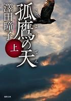孤鷹(こよう)の天