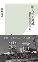 消えゆく沖縄〜移住生活20年の光と影〜