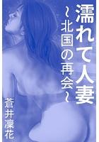 濡れて人妻〜北国の再会〜