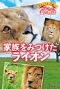 野生どうぶつを救え! 本当にあった涙の物語 家族をみつけたライオン