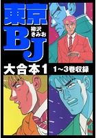 東京BJ 大合本