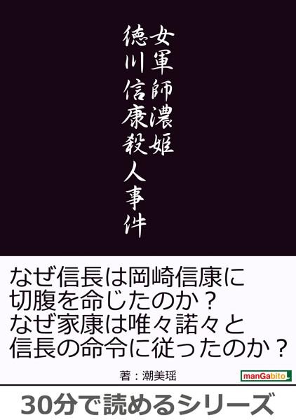 女軍師濃姫 徳川信康殺人事件。30分で読めるシリーズ