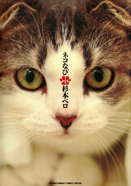 ネコなび (1)
