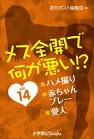 メス全開で何が悪い!? vol.14〜ハメ撮り、赤ちゃんプレー、愛人〜