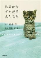 世界からボクが消えたなら 〜映画「世界から猫が消えたなら」キャベツの物語〜