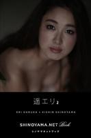 遥エリ2 [SHINOYAMA.NET Book]