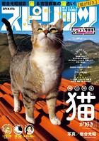 週刊ビッグコミックスピリッツ 2017年4・5合併号 (2016年12月26日発売)