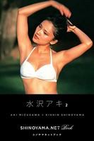水沢アキ2 [SHINOYAMA.NET Book]
