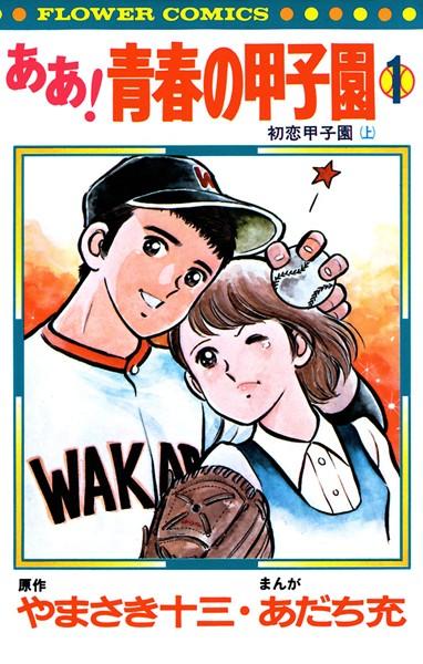 ああ!青春の甲子園 (1)