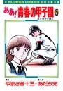 ああ!青春の甲子園 (5)