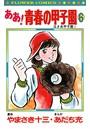 ああ!青春の甲子園 (6)