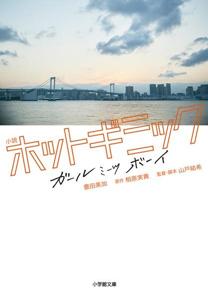 小説 ホットギミック ガールミーツボーイ