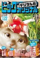 ビッグコミックオリジナル 2019年14号(2019年7月5日発売)