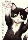 猫暮らしのゲーマーさん (3)