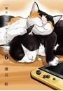 猫暮らしのゲーマーさん (6)