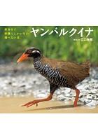 ヤンバルクイナ 〜世界中で沖縄にしかいない飛べない鳥〜(小学館の図鑑NEOの科学絵本)