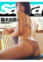 幸運の女神 2 藤木由貴 11 [sabra net e-Book]