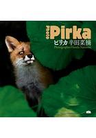 ピリカ Photo Pirka